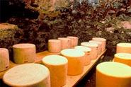 fromage-laitcru.jpg