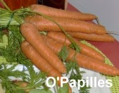 carotte.jpg