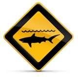 requin,surf,océan,la réunion,mer