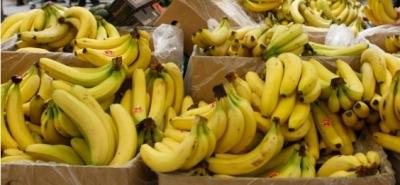 gênes,alimentation,population,planète,banane,économie,espèces