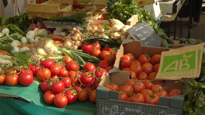 ab,agriculture biologique,agriculture intensive,agricul,antioxydants,santé,métaux lourds,cadmium,alimentation,alimentation biologique