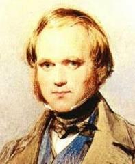 darwin-jeune.jpg