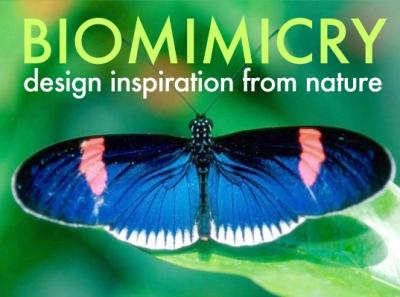 nature,énergies,sciences,écologie,biodiversité,solaire