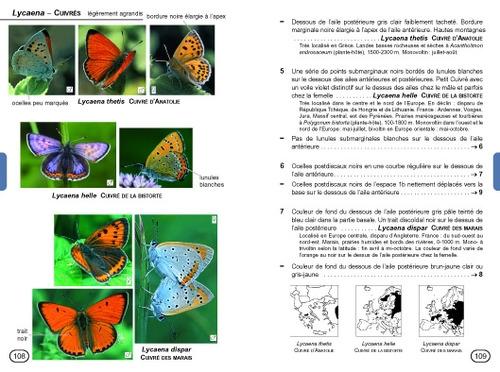 guide-papillons02.jpg
