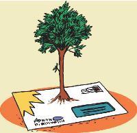 arbres,environnement,déforestation,déchets,recyclage,pollution,foret,bois