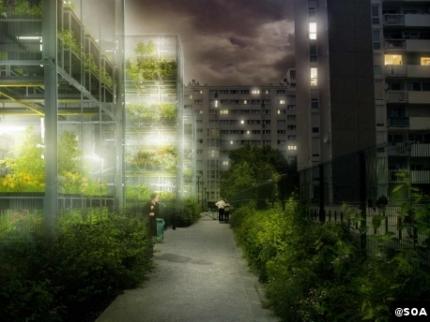 ville, urbanisme, agriculture, potagers, architecture,consommateurs
