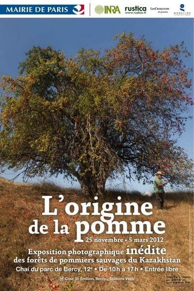 pommes,pesticides,chine,biodiversité,ours