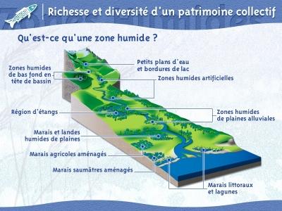 eau,eau potable,planète,sciences,économie,écosystème