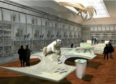 musée,bordeaux,environnement,nature,espèces menacées,diversité
