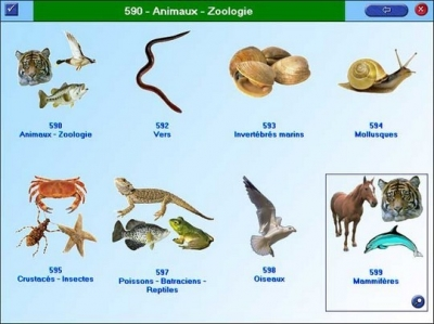écologie,espèces menacées,réchauffement climatique,changements climatiques,biodiversité