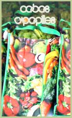 sacs-ecologiques.png