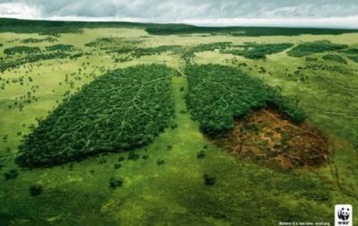 écologie,planète,terre,ressources,environnement,population