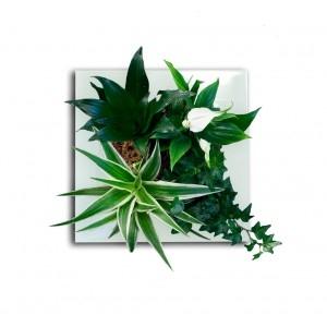 tableau-vegetal.jpg