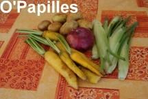 fenouil-carottes-pdt01.jpg