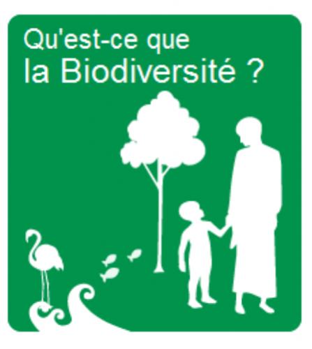 biodiversite-parc01.png