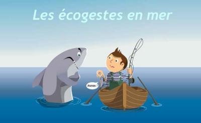 mer,océan,développement durable,pollution,éco-citoyen