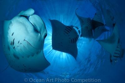 mer,ocean,photographie,photos,concours photographique,concours photos,concours,pêche
