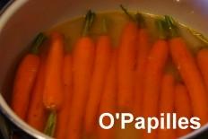 carottes-jeunes-basilic02.jpg