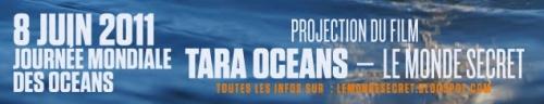 océans,tara,mer,