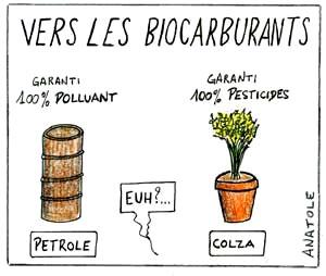 biocarburants,énergies renouvelables,énergies,environnement,atmosphère,agriculture,gaz à effets de serre
