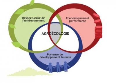 agroécologie,agriculture biologique,rabhi,espèces auxilliaires,ressources,inra,écologie