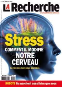 stress,cerveau,santé,médecine,sciences