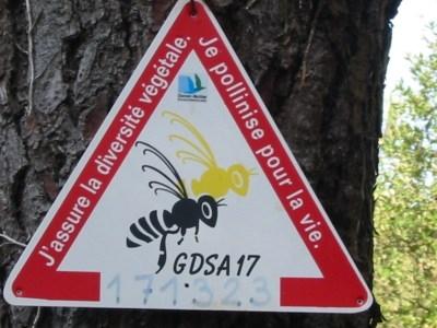 abeille-europe.jpg