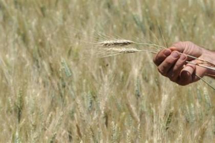 afrique,sécheresse,faim,population,agriculture,météo