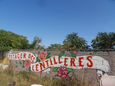 potagers,collectif,maraîchage,jardinage,sciences sociales