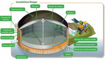 méthane,énergies renouvelables,électricité,eau,déchets,vache