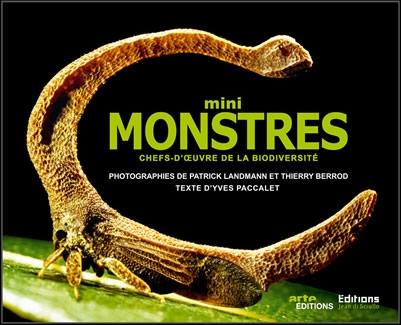 biodiversité,insectes,photographie,exposition