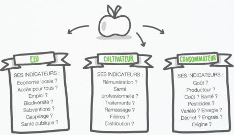 pommes,fruits,développement durable,santé