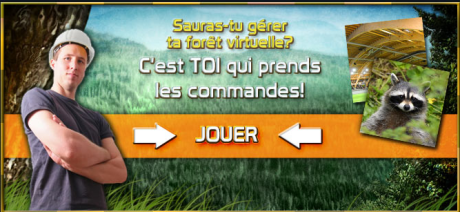 gestion-foret01.png