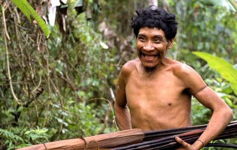 foret,déforestation,amazonie,biodiversité