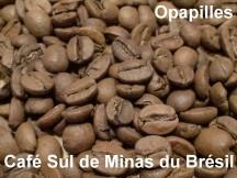 cafe-bresil.jpg