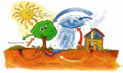 chauffage,bois,énergies renouvelables,co2,pollution,canada