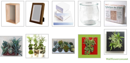 tableau-vegetal.png