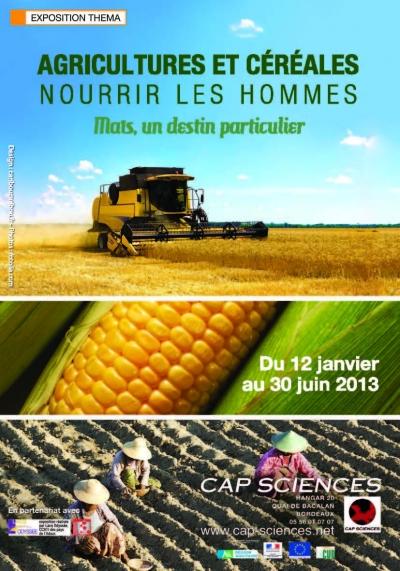 alimentation,mais,blé,céréales,agriculture,semences,planète,sciences