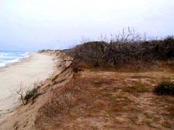 plage,mer,océan,gironde,estuaire,érosion