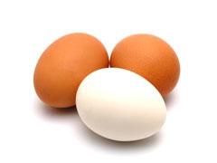 oeufs,alimentation,protéines,sélénium,vitamines,poulet,santé