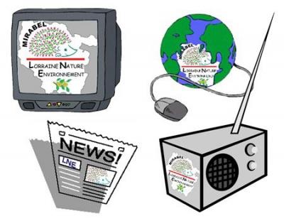 intelligence,internet,médias,sciences humaines,téléphone,éducation,apprentissage