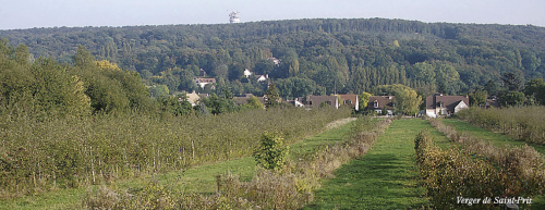 VO-biodiversite-agriculture.png
