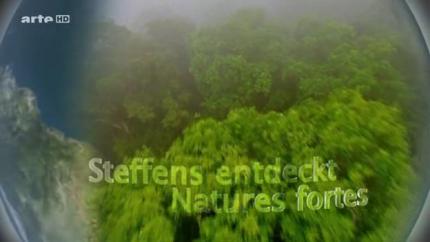nature,documentaire,arte,groenland,écologie,environnement,banquise