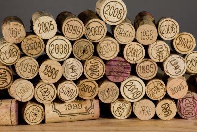vin,viticulture,vigne,raisins,changements climatiques,écologie